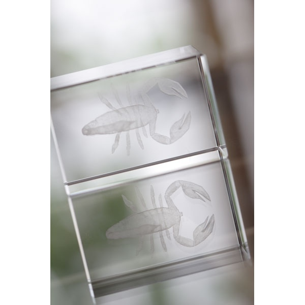 bloc en verre avec logo 00041v0000545 partir de 5 05 euros ht. Black Bedroom Furniture Sets. Home Design Ideas