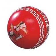 Balle de cricket