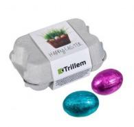 Boîte d'œufs en chocolat