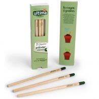 Coffret 3 crayons à graines couleur