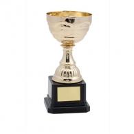 Trophées promotionnel
