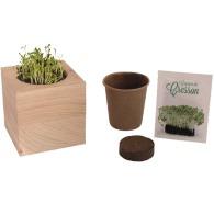 Cube bois graines