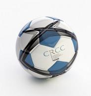 Mini ballon de football 30 panneaux