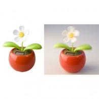 Fleurs artificielles et fleurs solaires avec logo