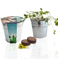 Kit de plantation personnalisable pot zinc 12cm
