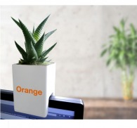 Pot'ordi - mini-plante ordinateur