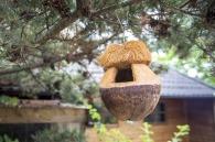 Caja nido para cocoteros