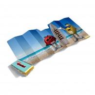 Pare-soleil publicitaires en carton compact quadri