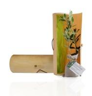 Plant personnalisable d'arbre en tube bois