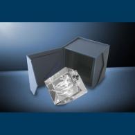 Trophée gravure laser