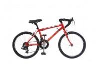 Vélo de Course publicitaire 14 vitesses