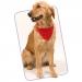 Collier Bandana Roco, collier pour chien publicitaire