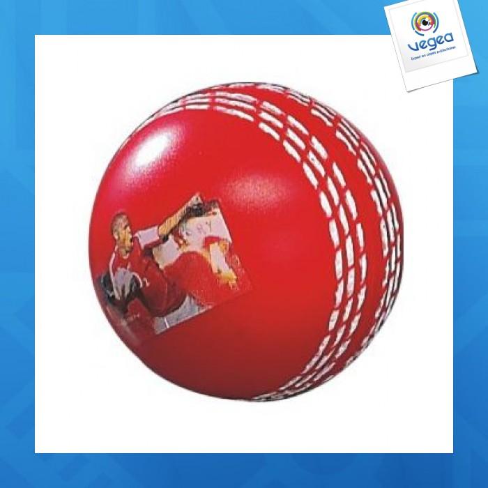 Balle de cricket personnalisable 01377v0040196 partir de 0 96 euros ht - Objet anti stress bureau ...