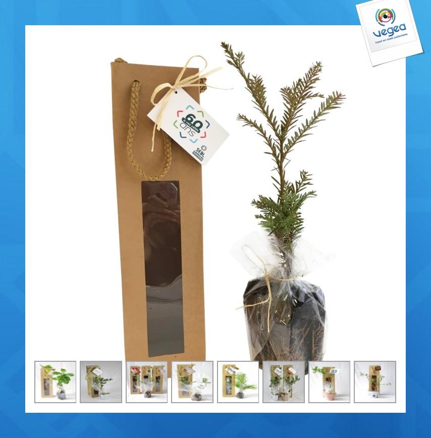 Plant logoté d'arbre en sac kraft