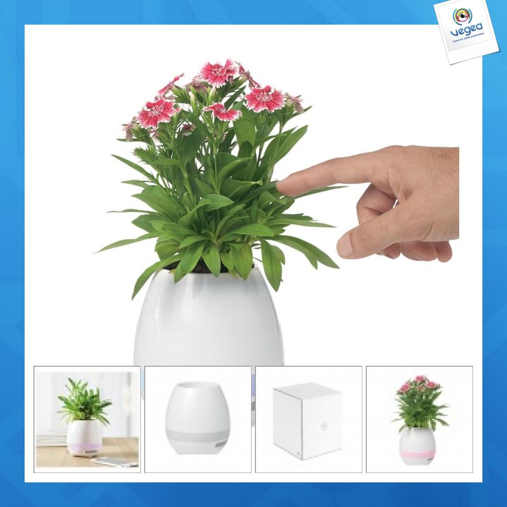 Pot de fleurs enceinte 5w