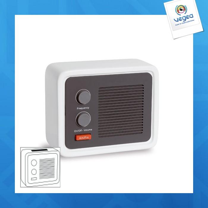 Radio personnalisable ice radio